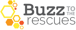 Buzz to the Rescues
