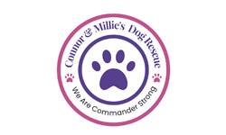 Connor  Millie's Dog Rescue